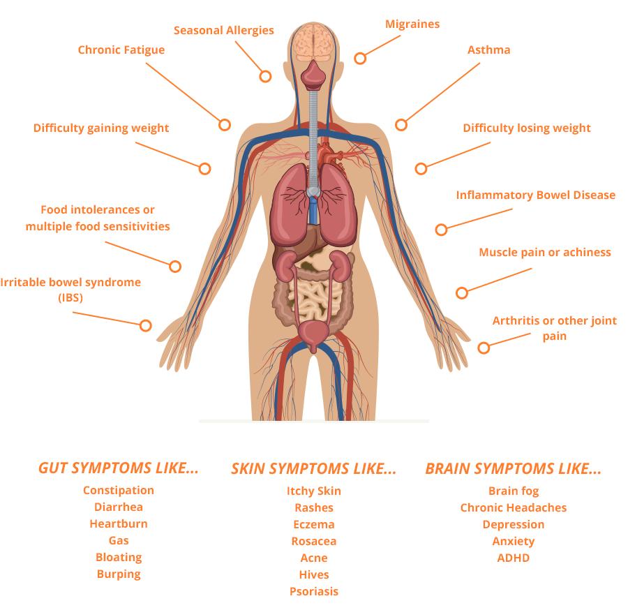 Leaky Gut Body Symptoms