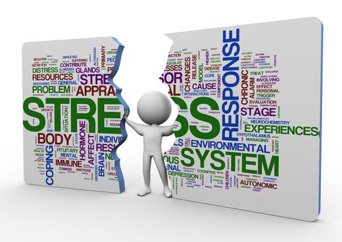 Stress relief program