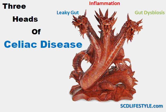 The Three Heads of Celiac Disease