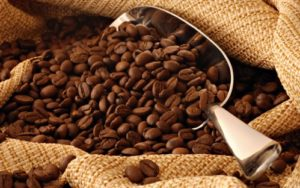does coffee affect your gut