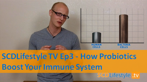 How Probiotics Boost Your Immune System