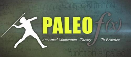 Paleofx-banner