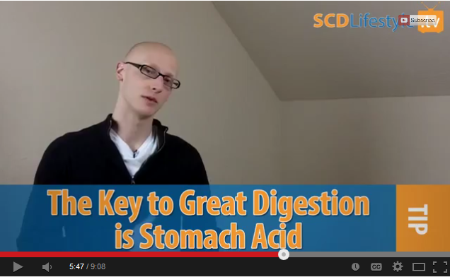 Screenshot of Jordan talking about stomach acid (the key to digestion)