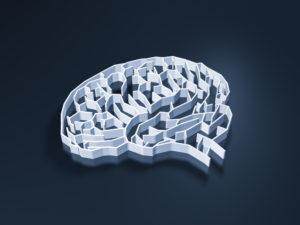 Pic of brain maze