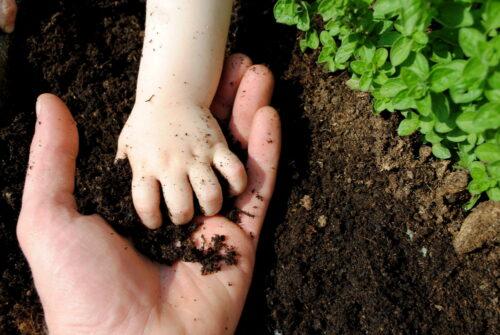 kid-parent-soil-in-hands