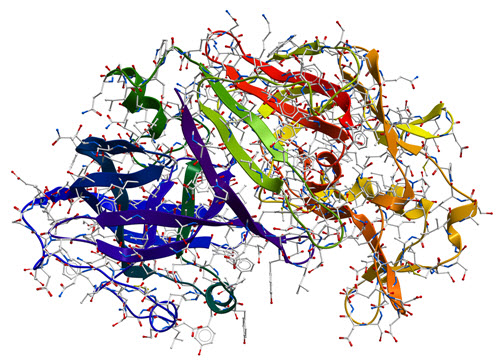 protein-3d-structure