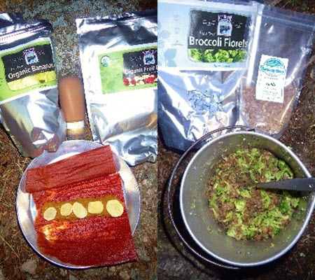 fruit-leather-and-freeze-dried-lentils-and-veggies-combined