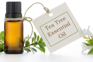 tea-tree-7-uses-bottle-with-label