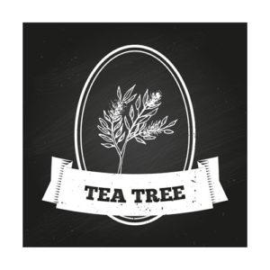tea-tree-7-uses-for-kids-skin