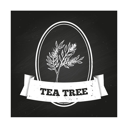 tea-tree-7-uses-for-kids-skin