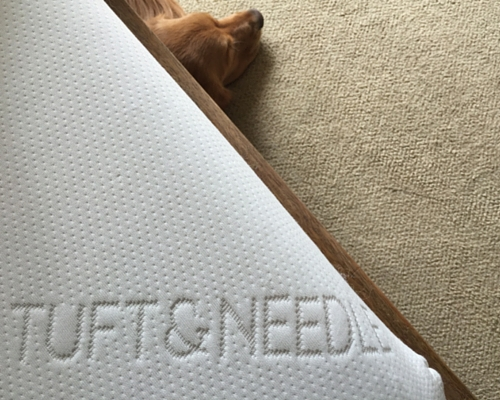 The Best Non-Toxic Mattress on the Market (it feels great and you can afford it)
