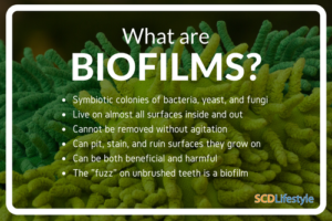 what-are-biofilms