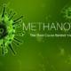methanogens