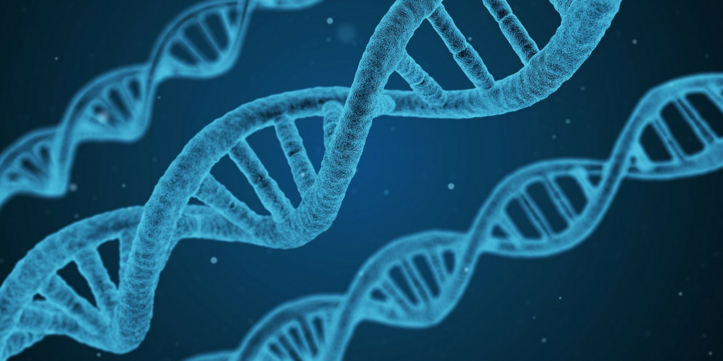 Genetic component of psoriasis