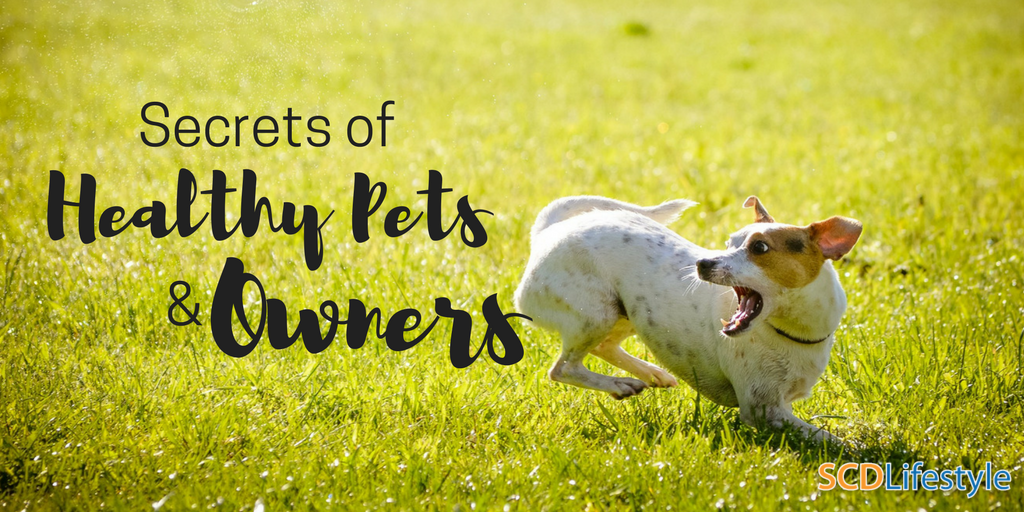 Secrets of Healthy Pets & Owners