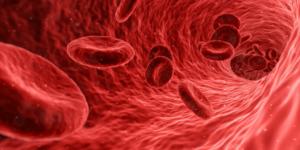 What causes Raynaud's disease?