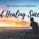 Eric Green's Gut Healing SCD Success Story