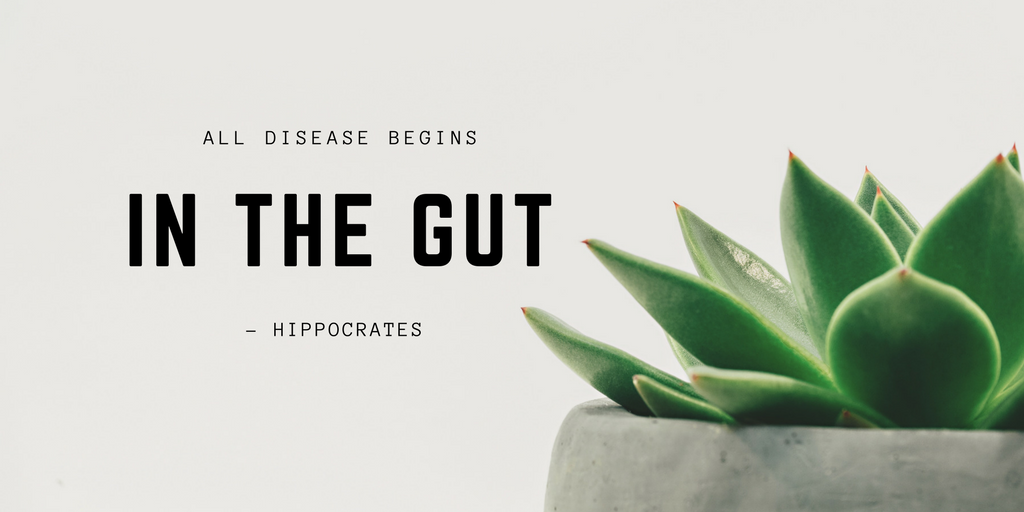 All disease begins in the gut. ~Hippocrates