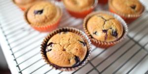 nut-free, grain-free blueberry muffins